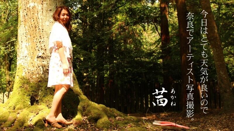 今日は天気がとても良いので奈良でアーティスト写真撮影
