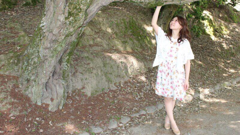 今日は天気がとても良いので奈良でアーティスト写真撮影4