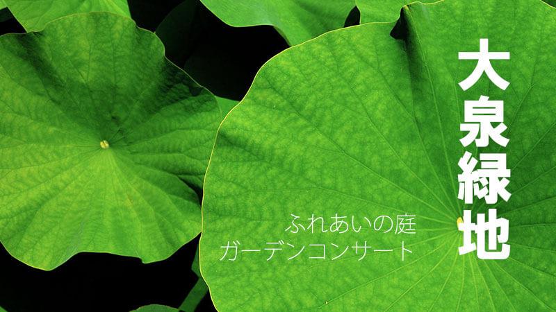 大泉緑地ふれあいの庭ライトアップ&ガーデンコンサート